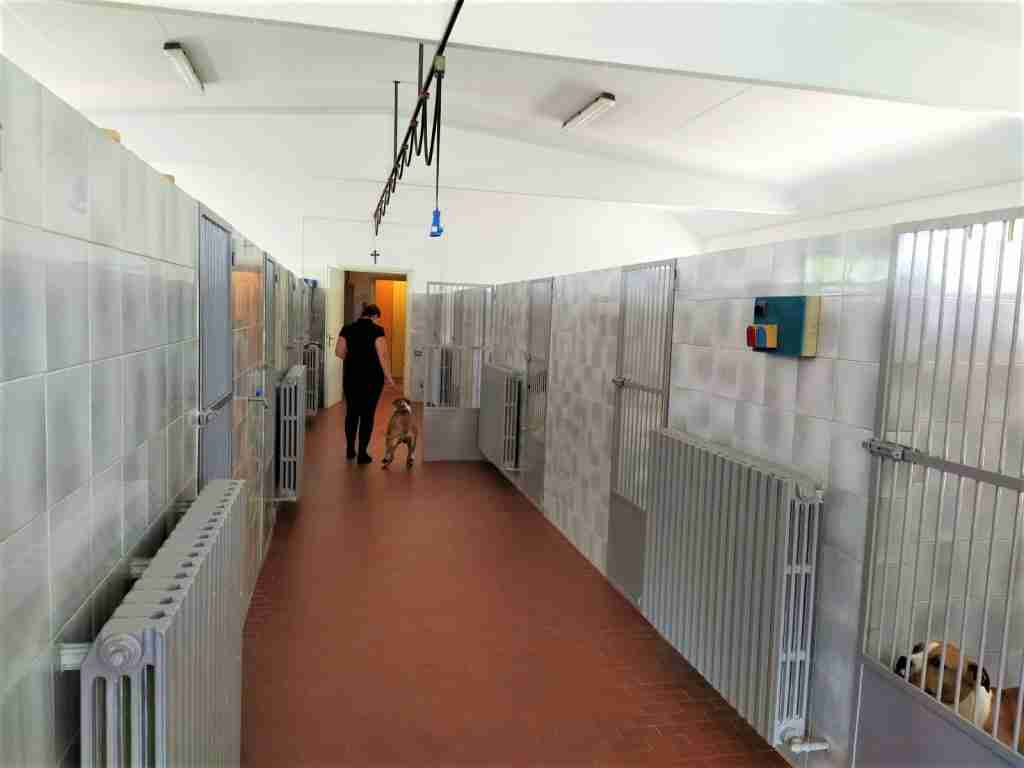 pensione cani in Lombardia