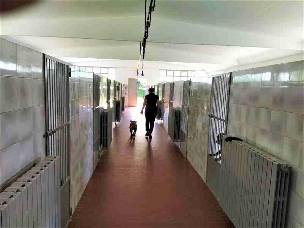 pensione per cani provincia di bergamo